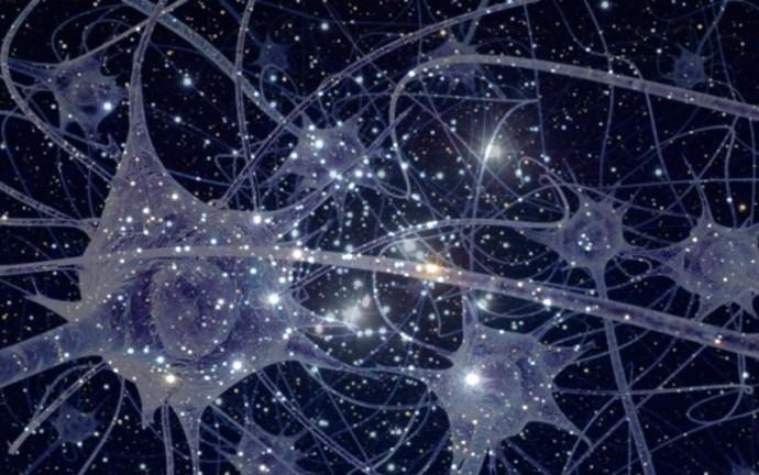 neuroneétoile.jpg